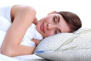 Bamboo Queen Pillow