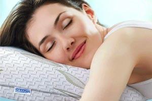 Queen Size Bamboo Pillow